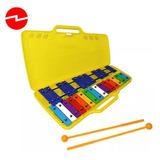 Metalofono 25 Notas Xilófono Metal Colores C/maleta+caleidos