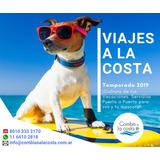 Traslados Viajes Mascotas Costa Atlántica