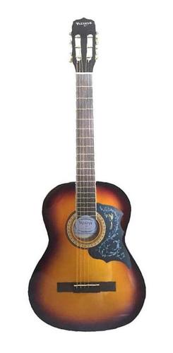 Guitarra Acustica Vizcaya Arfg94 Sb Cuerdas Metal