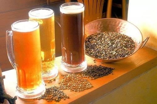 Curso Hacer Cerveza En Casa Paso A Paso Receta Completo