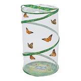 Pabellon De Mariposas En Vivo De Insectos