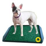 Bandeja Sanitaria Baño P/perros Cachorros Mascotas C/rejilla