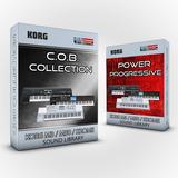 Korg Krome/m50 - Leads, Sonidos C.o.b + Power Progresive