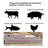 Proyectos Completos De Tilapias, Gallinas, Cerdos Y Vacas