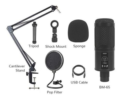 Micrófono Condensador Usb + Brazo + Filtro Combo