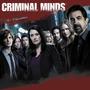 Seriado Criminal Minds - 1ªa15ª Temporada Dublado + Encarte. Original