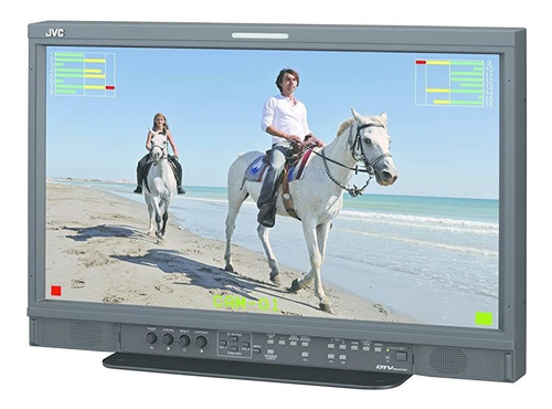 Monitor Jvc Dt-e21l4u 21-inch Multi-format Lcd Led Backlit