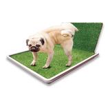 Bandeja Sanitaria C/acc Perros Cachorros Mascotas 40% Off!!