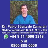 Veterinario Castración Gatos , Llegamos Todos Los Barrios