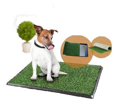 Bandeja Sanitaria Baño Mascotas Cesped Perro 55 X 28