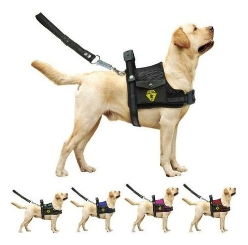 Peitoral Coleira Com Regulagem Guia Para Cães Com Bolso