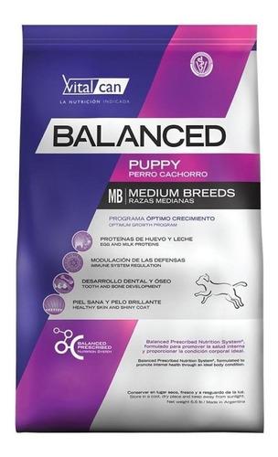 Alimento Vitalcan Balanced Para Perro Cachorro De Raza Mediana Sabor Mix En Bolsa De 20kg