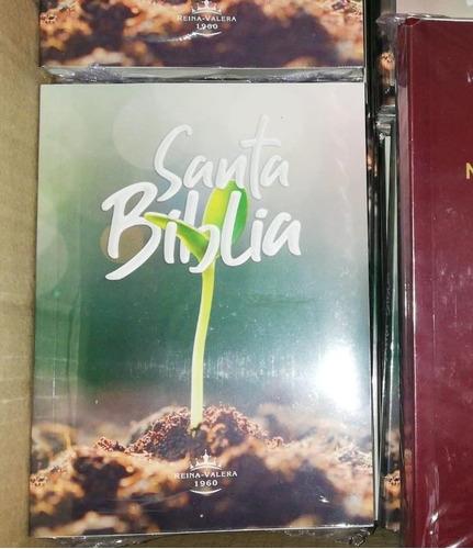 Biblias Economicas Biblia De Oferta Biblias De Promoción
