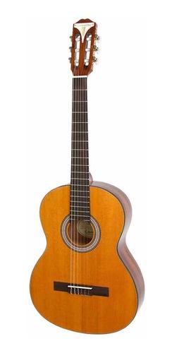 Guitarra Clasica EpiPhone Pro1