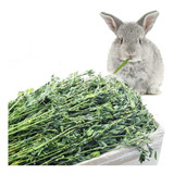 Heno De Alfalfa En Hebras Para Conejo, Cobayos X 4 Kilos.