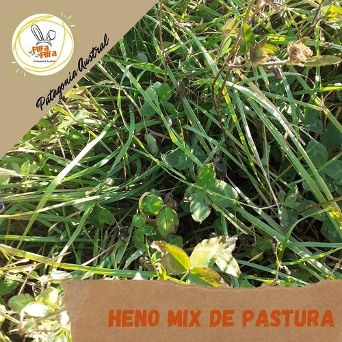 Heno De Mix De Pastura Para Conejo, Cobayo, Chinchilla.