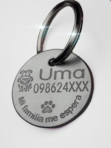 Chapita, Placa, Envío Gratis Para Perros Acero Inoxidable