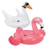 Set Flamingo Y Cisne Salvavidas Xxl, Inflable Alberca Intex