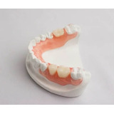 Consulta Dental. Odontologo.