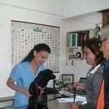 Veterinaria A Domicilio Caba Zona Norte