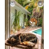 Cama Rede De Janela Para Gatos! Cama Suspensa - Demais!