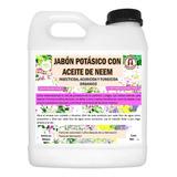 1 L De Jabón Potásico C/ Aceite De Neem Superinsecticida Eco