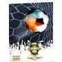 Álbum De Figurinhas Campeonato Brasileiro 2013 Séries A & B Original