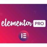 Elementor Pro + 300 Plantillas Premium