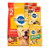 Pedigree Adulto 21kg + 2 Pouch + Biscrok
