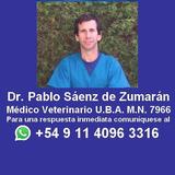 Veterinario Eutanasia Perros Y Gatos A Domicilio