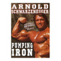 Pumping Iron / Arnold Schwarzenegger / Documentário / Dvd206 Original