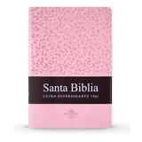 Biblia Gigante Con Letra Súper Gigante De 19 Puntos