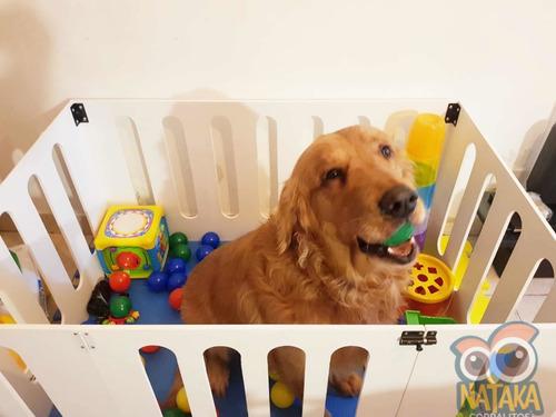 Corral Para Mascotas /  Perros A Medida !! Chico
