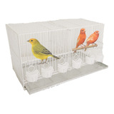 Jaula Aves Transportadora Canarios Periquitos Chica Cria