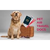 Certificado Asistencia Emocional Aereos :: Pet World Travel