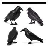 4 Cuervos Original Raven Antipaloma Protege Mascota Hot Sale