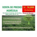 Predio Agrícola_pueblo Nuevo_la Libertad 13.66 Has_oferta