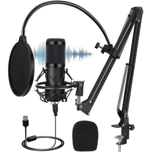 Kit Microfono Condensador Usb Brazo Antipop Bm800