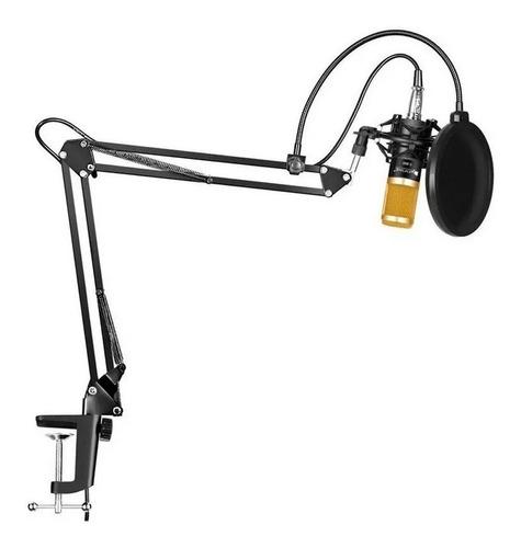 Kit Microfono Condenser Radio Estudio Youtube Stream Podcast
