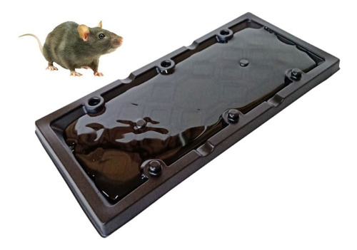 Placa Adesiva Pega Rato Baratas Escorpiões E Outros Insetos