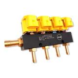 Riel De Inyectores De Gas Gnv/glp 3ohm 4 Cilindros