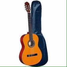 Guitarra Con Su Funda Se Estuche
