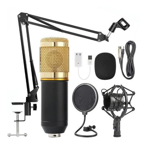 Microfono Condensador Bm800 Kit Pop Filter Paral Jirafa