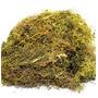 1 Litro Musgo Verde Desidratadas Decoração Arranjos Flores Original