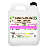4 L De Jabón Potásico C/ Aceite De Neem Superinsecticida Eco