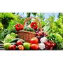 Adesivo Painel Cesta Frutas Legumes E Verduras Lindo Horta Original