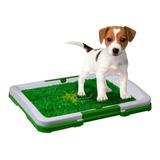 Tapete Entrenador Mascotas Lavable Baño Caninos