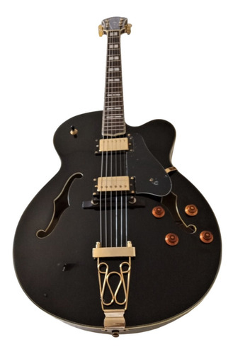 Guitarra Jazz Hollowbody Oscar Schmidt Oe40b Sin Case