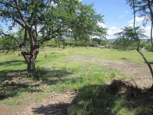 $ 450.00 pesos  por  m2 terreno  zona cálida en  morelos