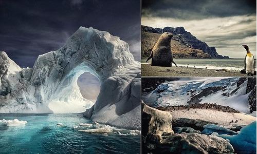 ** antartida ** alex bernasconi   increíbles fotografias!